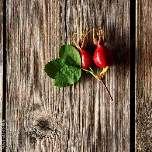 canvas print picture Rose hip over old wooden background