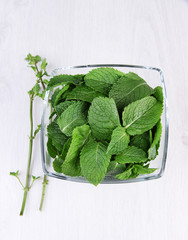 Glass square bowl of mint leaves on white background isolated