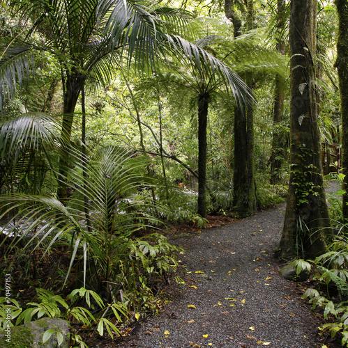 Walking trail © Stillfx