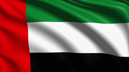 flag of the United Arab Emirates with fabric structure; looping