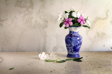 flowers in vase over grunge background