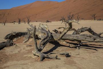 Namibia, sossusvlei, red desert