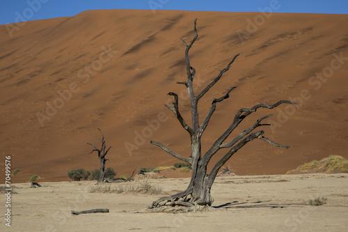 Fotobehang Woestijn Namibia, sossusvlei, red desert