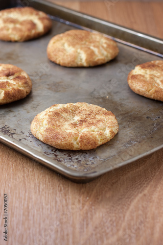 canvas print picture Fresh baked Snicker Doodle Cookies