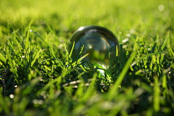 Crystal ball lying in the middle of grass patch