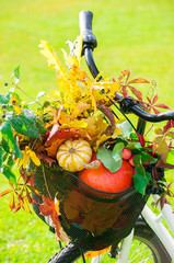 Bicycle with a basket full of pumpkins and autumnal leaves