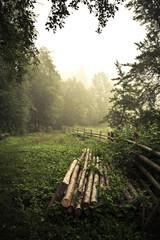 The morning in Carpathian village