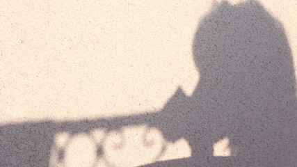 Shadow of woman drinking coffee on terrace