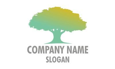 Homy Tree Logo