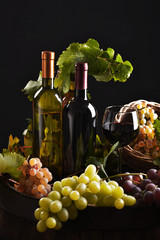 Bottles of wine isolated