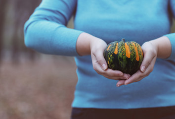 Woman holding orange and green pumpkin