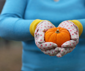 Woman wearing gloves holding orange pumpkin