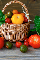 Fresh vegetables, tomatoes in a basket