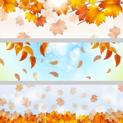 Autumn Theme Banners