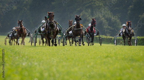Fotobehang Paardensport Horse trotting race