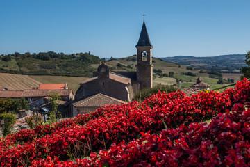 Village fleuri de Lautrec