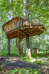 Cabane dans les arbres_4