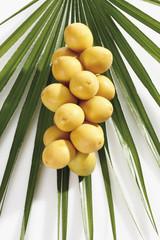 Frische Datteln auf Palmblättern