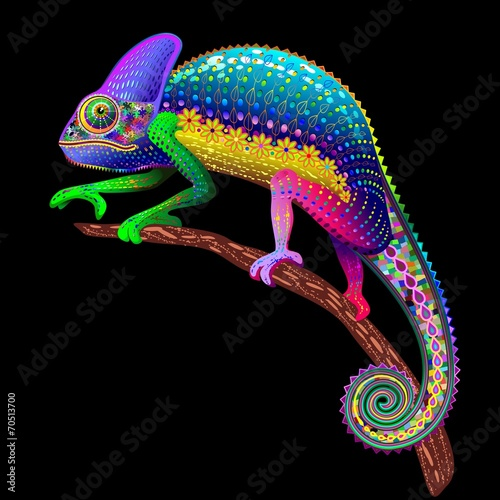 Fototapety, obrazy : Chameleon Fantasy Rainbow Colors