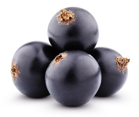 Black currant berries isolated on white with clipping path