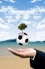 Implant the football knowledge concept