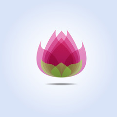 Pink Lotus Flower Icon Vector Illustration