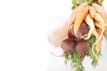 Vegetables  over white background