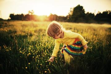 cute little girl on meadow
