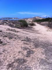 Dünen am Cabo de Trafalgar