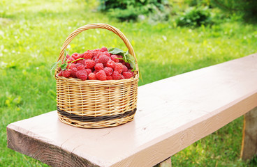 Wicker basket full of ripe raspberry on the bench