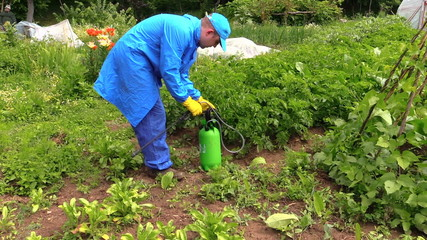 Farmer man spray fertilize pesticides chemical on plants