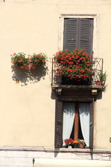 Verona facades Veneto Italy