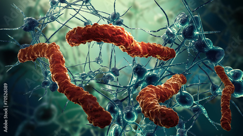 nerve cell network and virus - 70526389