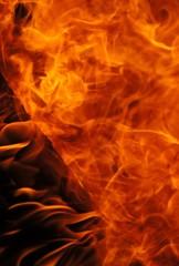 Flammenpracht