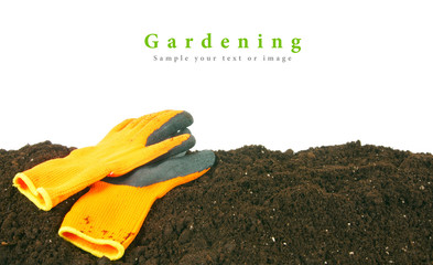 Gardening. Gloves on the earth.