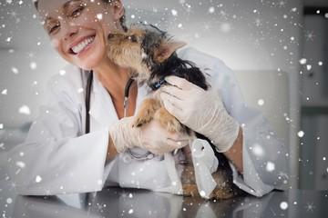 Composite image of puppy kissing female vet