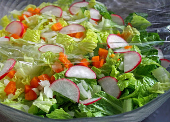 Colorful Garden Salad covered with plastic wrap to keep fresh