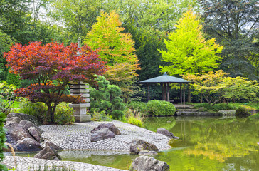 Red tree near the green pond in Japanese garden