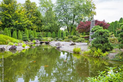 Green pond in Japanese garden in Bonn - 70533580