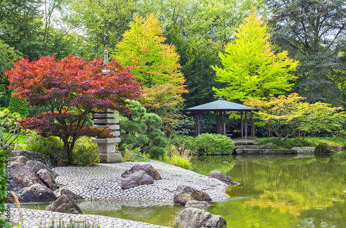 Red tree near the green pond in Japanese garden - 70533582