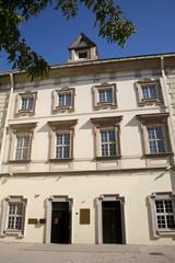 Radvilos Palace Museum