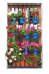 Old Window with Flowers Decirations isolated on white