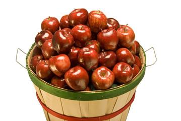 Bushel Basket Filled With Apples