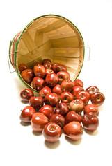 Apples Spilled From Bushel Basket