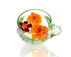 Three Marigold Flowers in the Glass