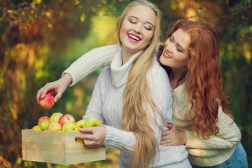 Two sisters in Fall yellow apple orchard. Autumn outside in colo