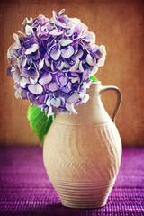 purple hydrangea flowers in an old clay jar.