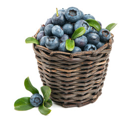 Fresh blueberry with green leaves