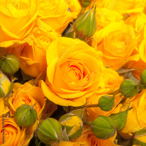 canvas print picture close up of yellow roses on the market