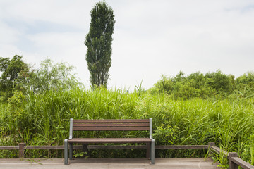 bench and wooden floor